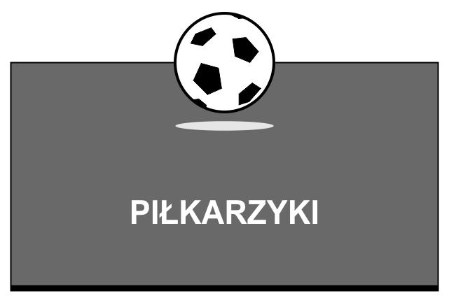 Piłkarzyki BILLKROS